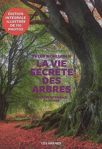 Livre La vie secrète des arbres - Recommandation Anselme Sélosse - Les Nouveaux Explorateurs Agence Discovery