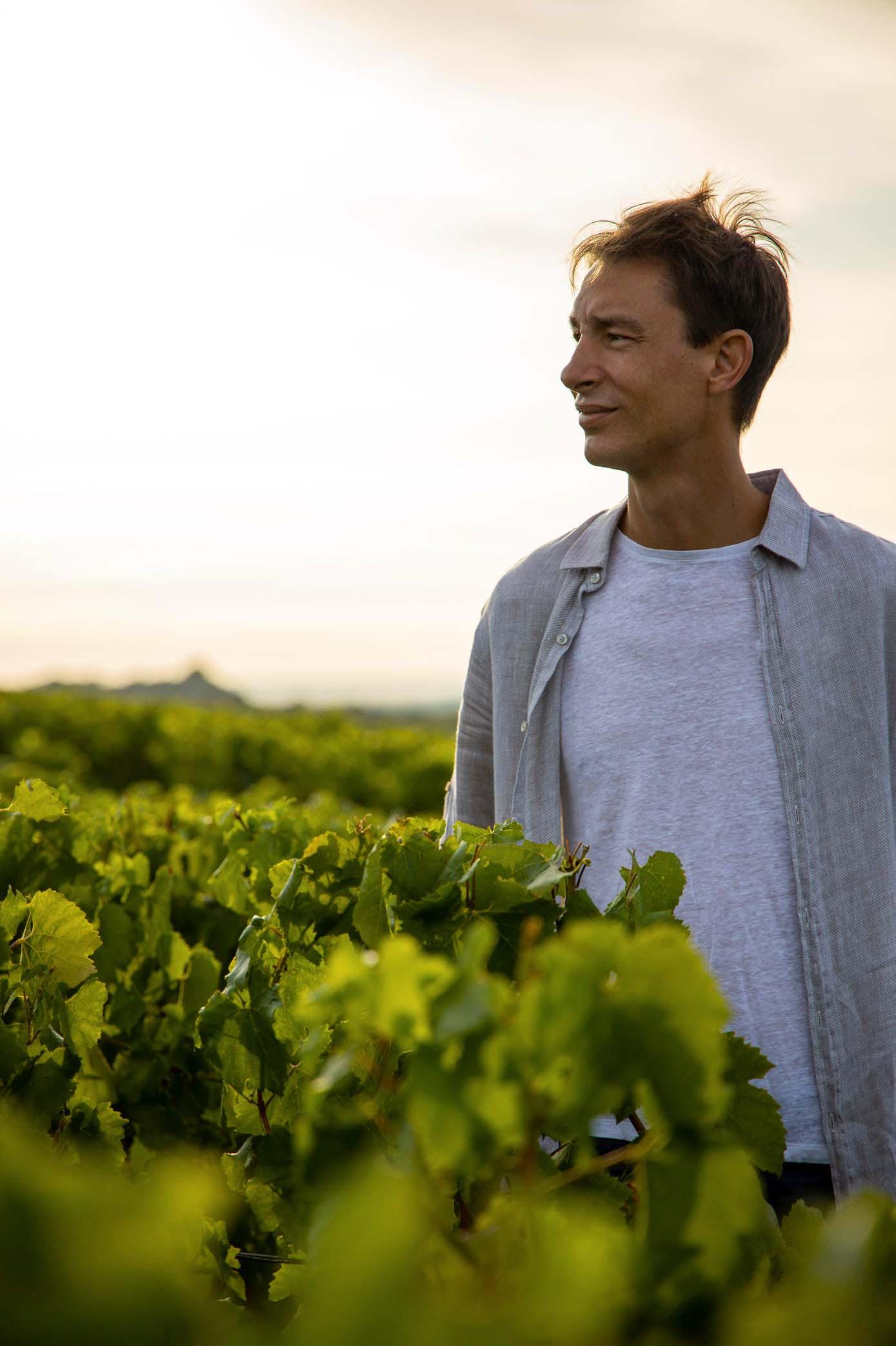Antoine dans les vignes pour le reportage photo du Champagne Antoine Chevalier - Agence Discovery